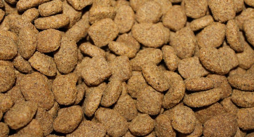 Hundefoder fra USA