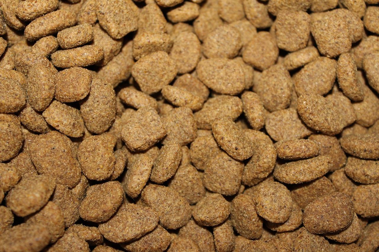 Forkæl din hundehvalp med særligt foder